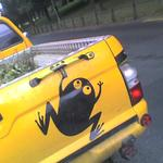 A frog painted on the tail end of a pickup truck.